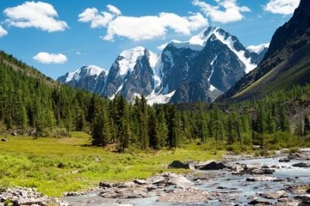 Taiga ou Floresta Boreal, na Sibéria (Rússia). Foto: Daniel Prudek / Shutterstock.com