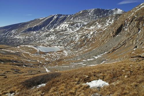 Tundra alpina. Foto: Robert Cicchetti / Shutterstock.com