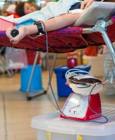 Doação de sangue. Foto: Vasin Lee / Shutterstock.com