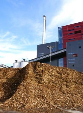Biomassa. Foto: nostal6ie / Shutterstock.com
