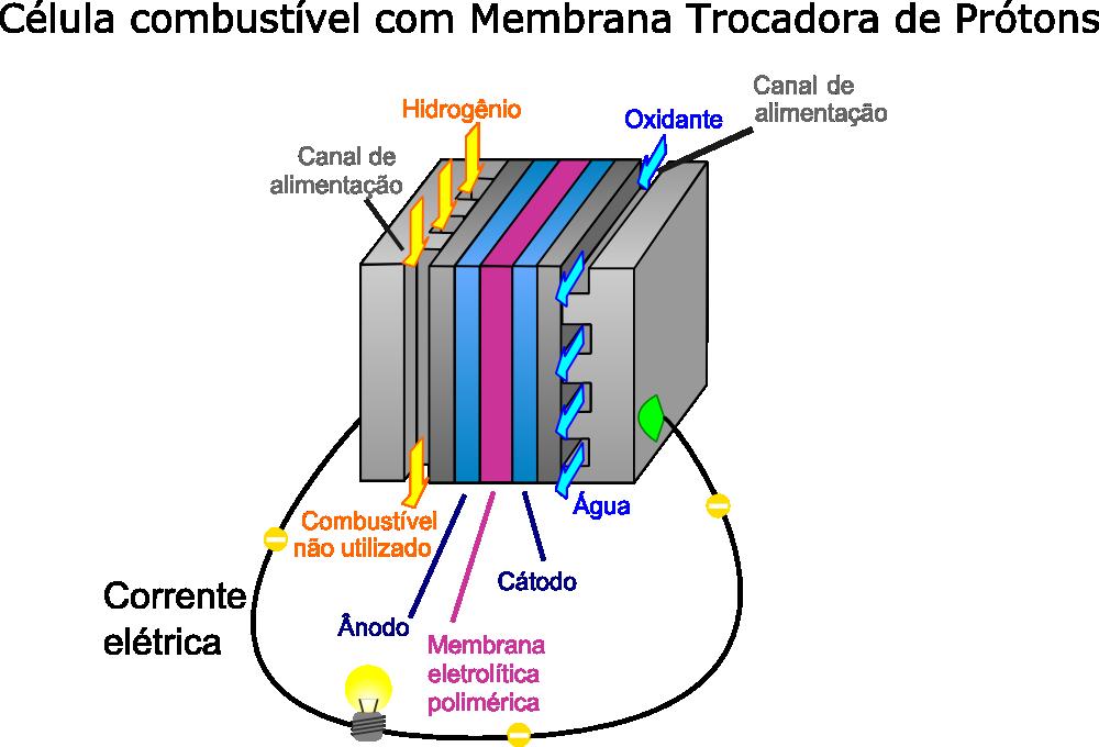 Clula de combustvel eletroqumica infoescola clula de combustvel ilustrao jafet via wikimedia commons adaptado ccuart Images