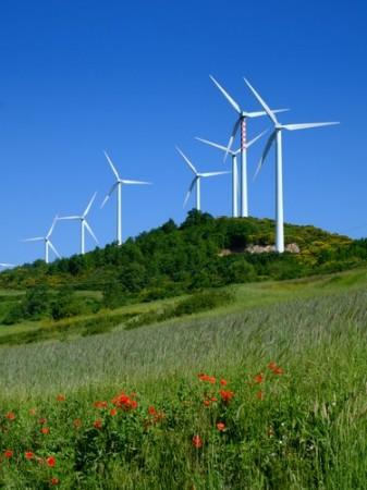 Usinas de Energia Eólica. Foto: Walter Caterina / Shutterstock.com