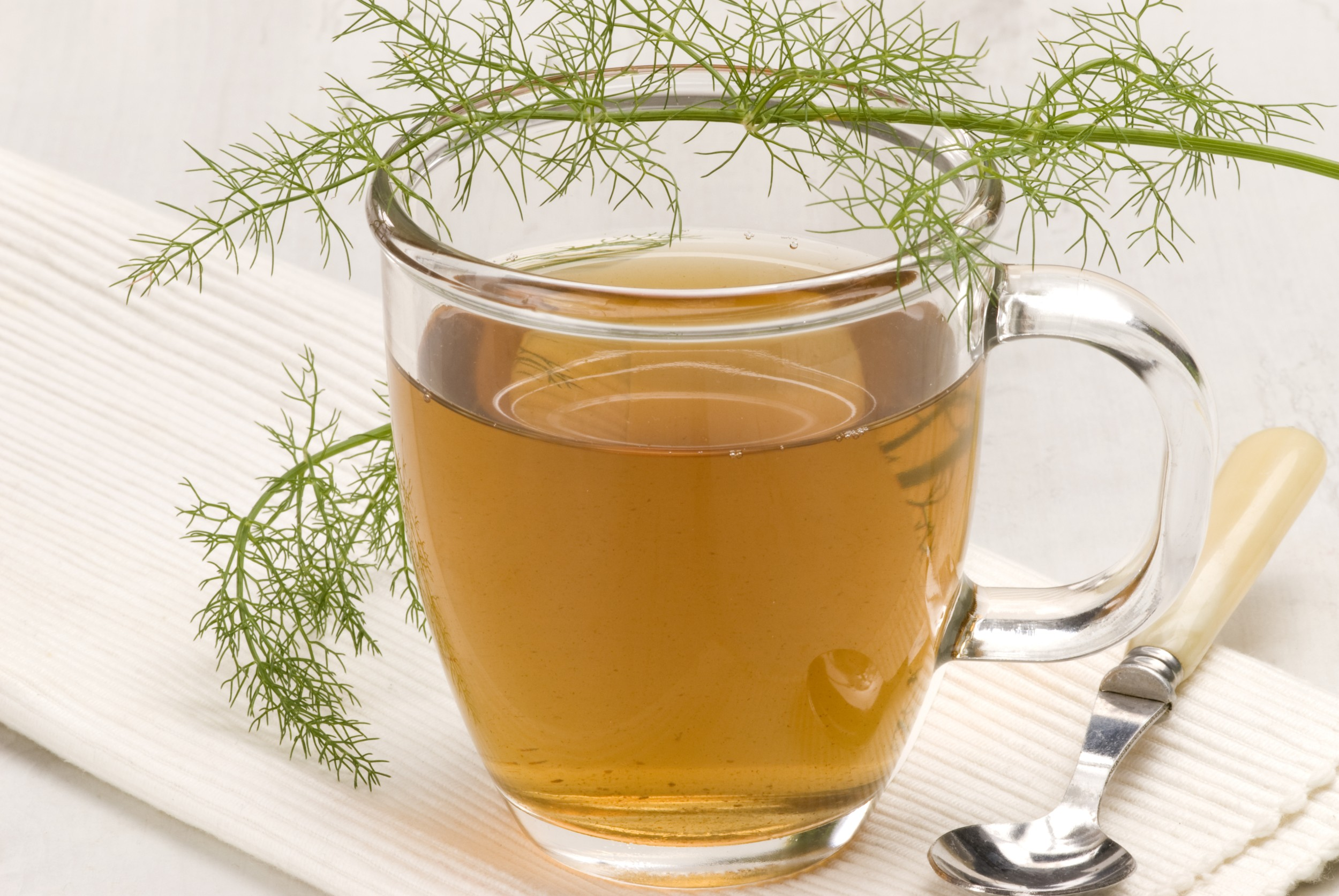 Chá de Erva Doce - InfoEscola