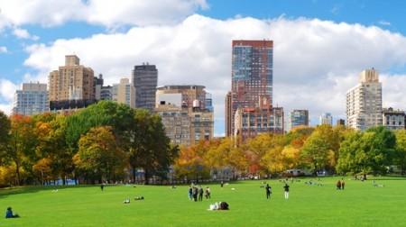Central Park, bem no centro de Nova York. Foto: Songquan Deng / Shutterstock.com