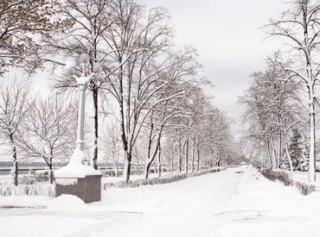 Em muitos lugares do planeta, os invernos são rigorosos, com grande precipitação de neve. Foto: Volkova Irina / Shutterstock.com