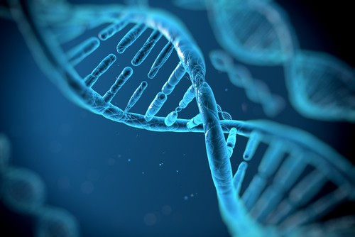 Genética - Biologia - InfoEscola