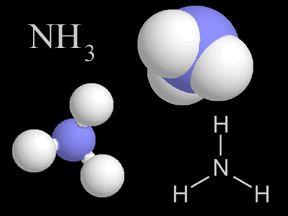amonia amoniaco