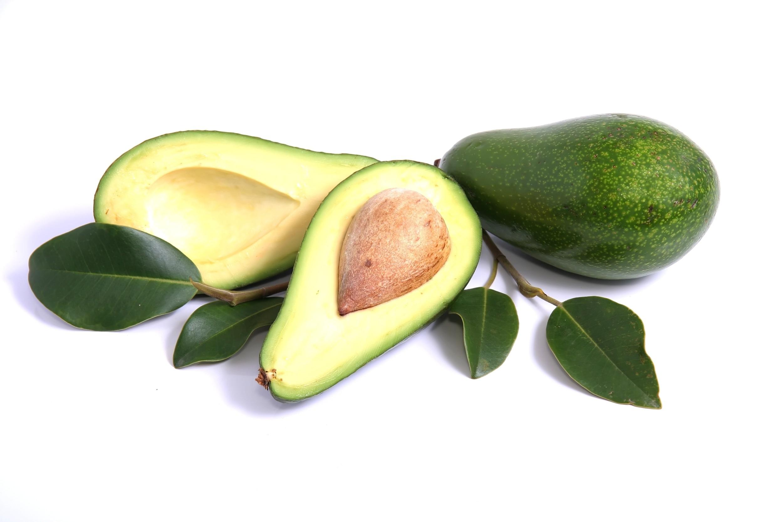 Abacate - Abacateiro - Fruta - InfoEscola
