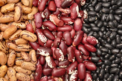 Algumas variedades de feijão. Foto: Flipser / Shutterstock.com