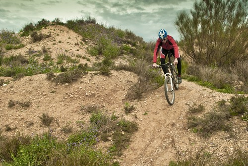 Mountain Bike. Foto: David Puerto / Shutterstock.com