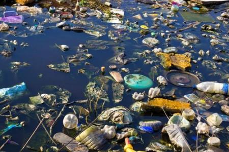 Poluição em água de lago. Foto: overcrew / Shutterstock.com