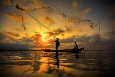 Foto: anekoho / Shutterstock.com
