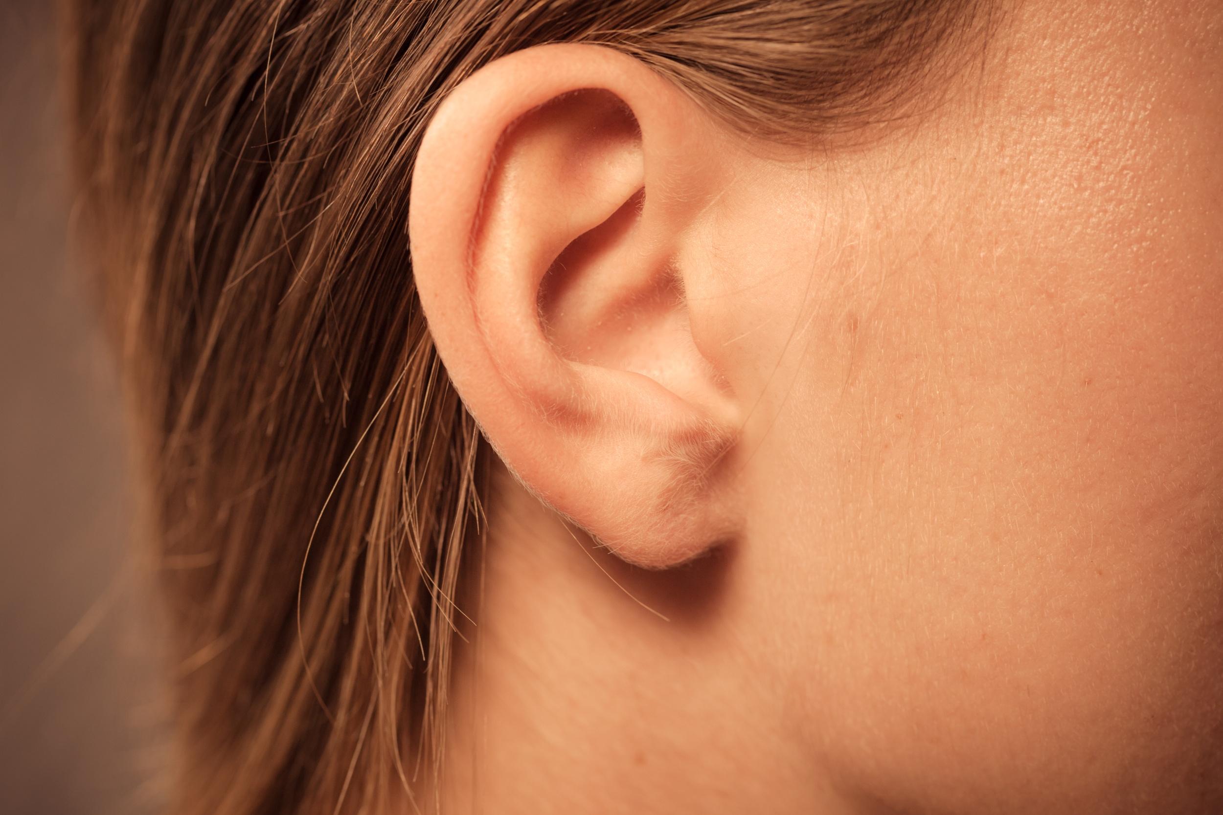 Ouvido Orelha Externo Média E Interna Audição