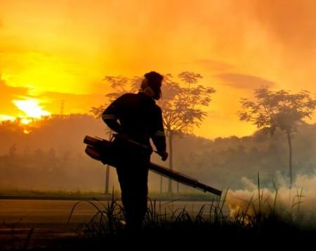 O nebulizador é um equipamento muito utilizado no combate às larvas e mosquitos da dengue. Foto: mrfiza / Shutterstock.com