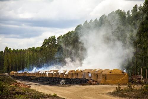 Fornos utilizados na produção de carvão vegetal. Foto: Beto Chagas / Shutterstock.com