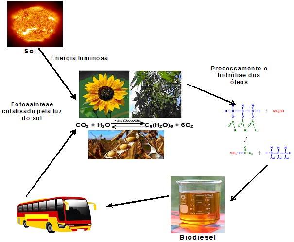 What Is Biodiesel >> Biodiesel - produção, vantagens - combustíveis - InfoEscola