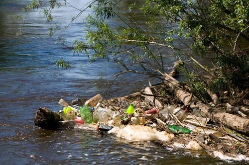 Rio Poluído. Foto: Ariene Studio / Shutterstock.com