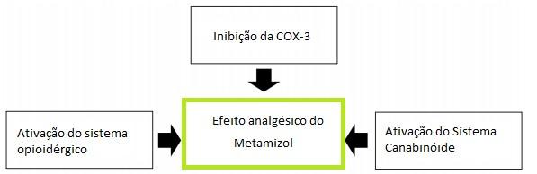 Possíveis mecanismos relacionados ao efeito analgésico da dipirona Traduzido e adaptado de: JASIECKA, A.; MAŚLANKA, T.; JAROSZEWSKI, J. J. Pharmacological characteristics of metamizole.Polish journal of veterinary sciences, v. 17, n. 1, p. 209, 2014.