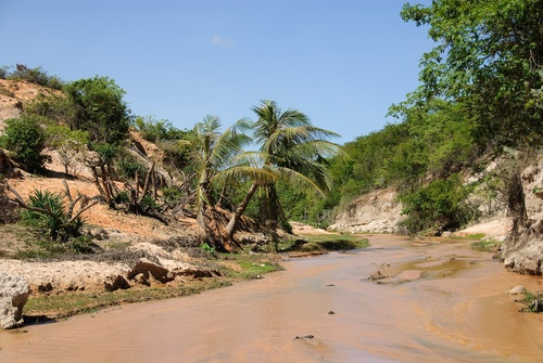 Assoreamento de rio. Foto: TAGSTOCK1 / Shutterstock.com