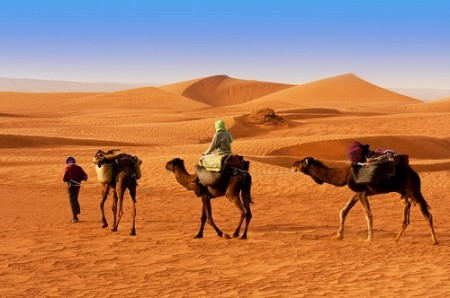 Beduínos no deserto. Foto: Seqoya / Shutterstock.com