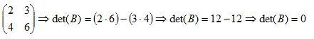 matriz inversa13