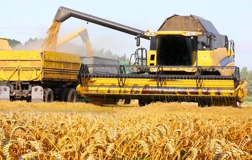 Colheitadeiras e caminhões aumentam a produção no campo. Foto: Kletr / Shutterstock.com