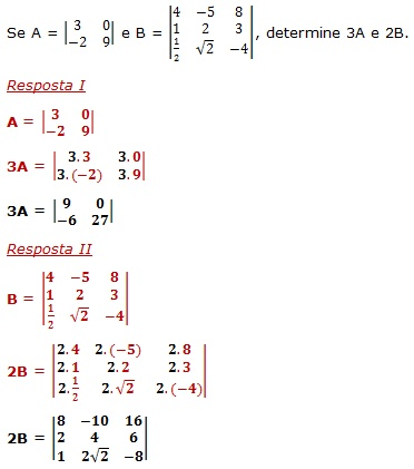 multiplicacao matrizes numero real1