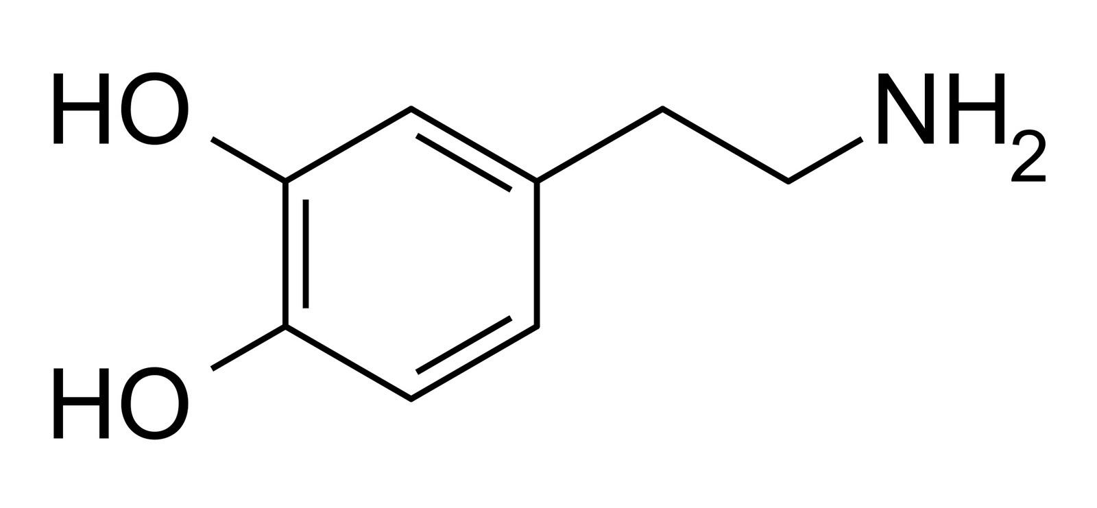 Dopamina na masturbação