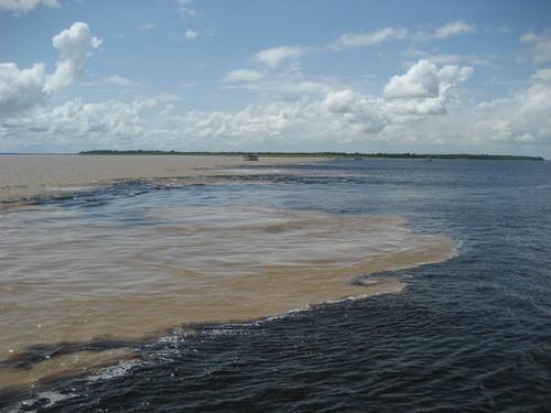 Encontro das águas do Rio Negro (à dir.), menos turvo, com as do Rio Solimões, que possui muitas partículas em suspensão. Foto: guentermanaus / Shutterstock.com