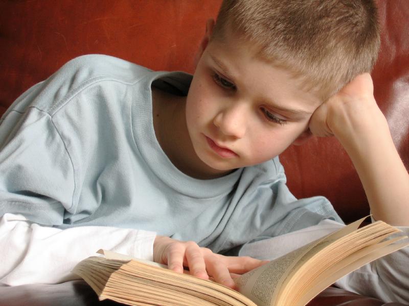 A Importância Da Leitura Educação Infoescola