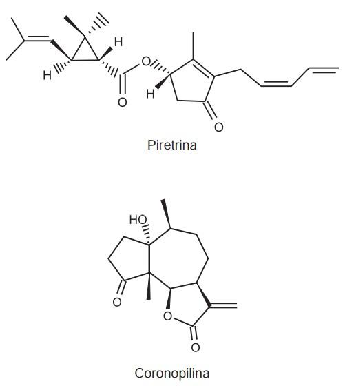 piretrina-coronopilina