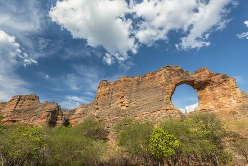 Serra da Capivara, parque nacional localizado nas áreas de Caatinga. Foto: ANDRE DIB / Shutterstock.com