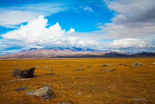 Estepes. Foto: TasiPas / Shutterstock.com