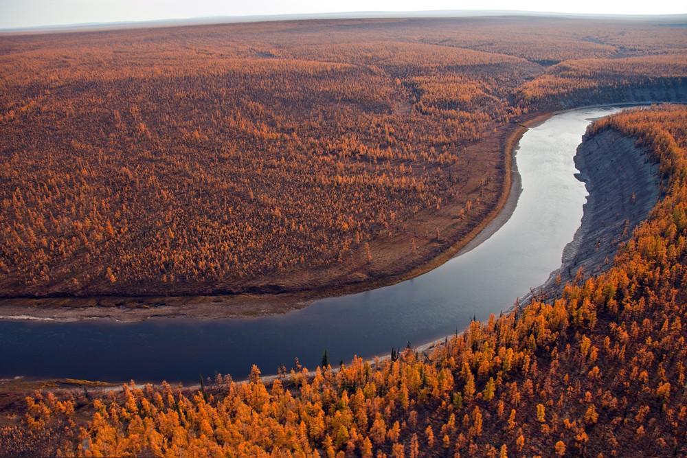 Região de Taiga na Sibéria (Rússia). Foto: Okyela / Shutterstock.com