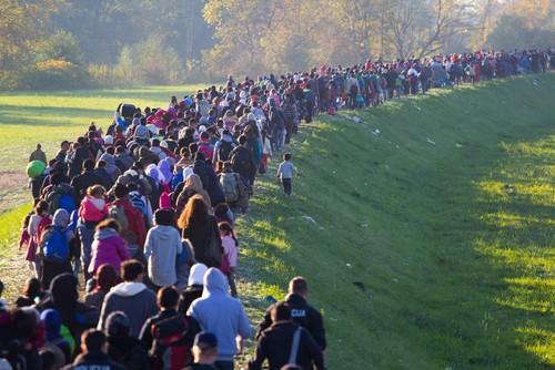 Milhares de refugiados vagam em direção à Alemanha. Foto: Janossy Gergely / Shutterstock.com