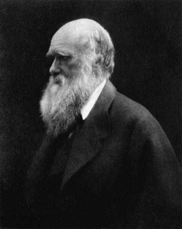 Charles Darwin em 1868. Foto: Julia Margaret Cameron / via Wikimedia Commons / domínio público