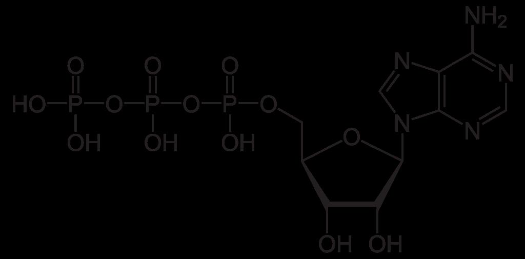 Phosphoric acid  Wikipedia