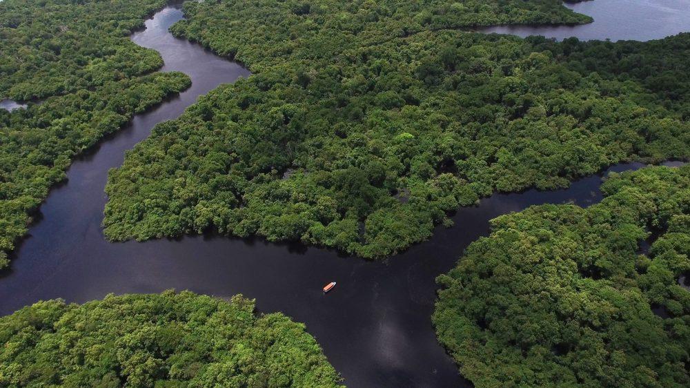 rio na floresta amazônica